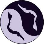 divestyle logo